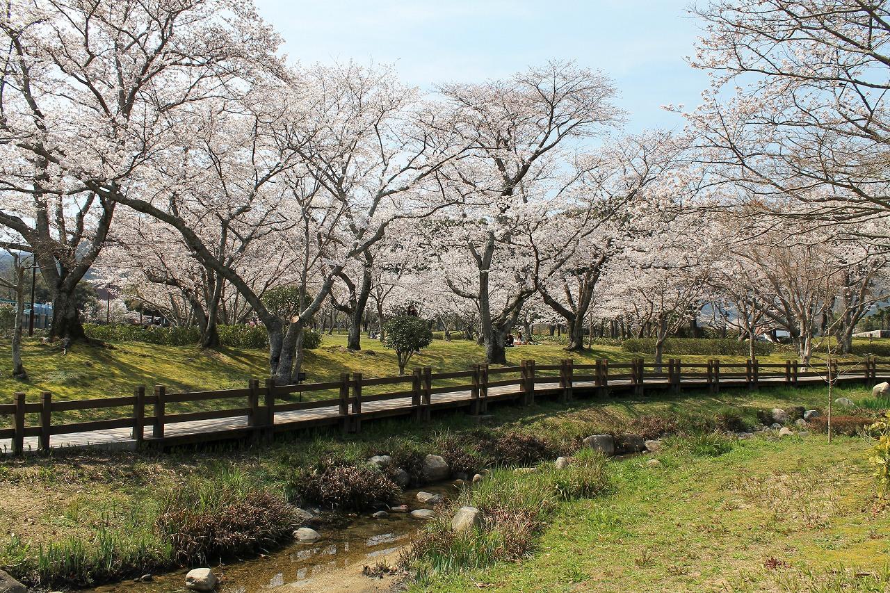 吉敷 維新百年公園3